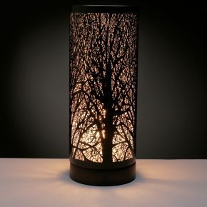LAMP09E_001.jpg